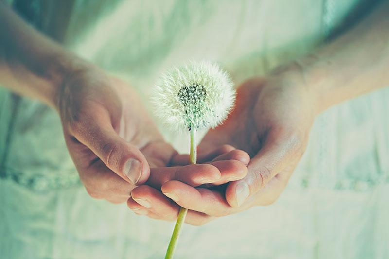 Aprender a educar nuestros deseos | Artículos | Enrique Rojas
